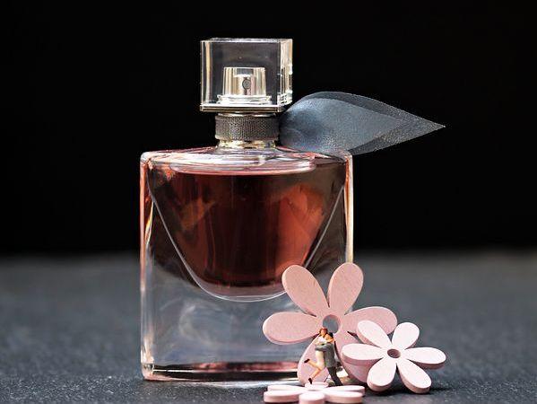 Quel Parfum Choisir Entre Femmes