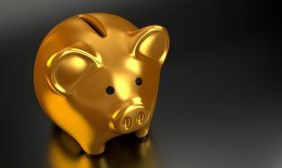 piggy-bank-2889046__480